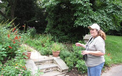 A Visit to Cindy Ahern's Conservation Garden