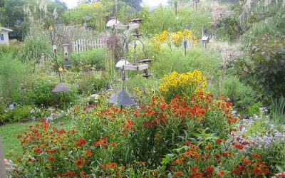 Wildlife Gardens are Nothing but an Ugly Overgrown Mess, NOT!