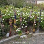 Ecosystem Garden Showcase: Ro Wilson, Cape May, NJ