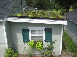 Ecosystem Gardening in Practice: Installing a Green Roof