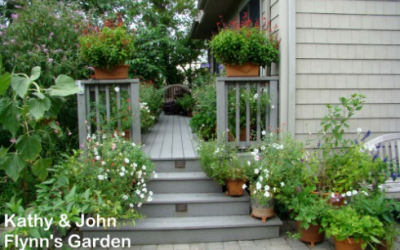 Container Gardening for Wildlife Habitat