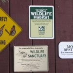 Certified Wildlife Habitat 35038