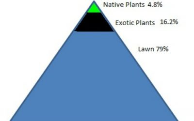 The Planting Pyramid Turned Upside Down