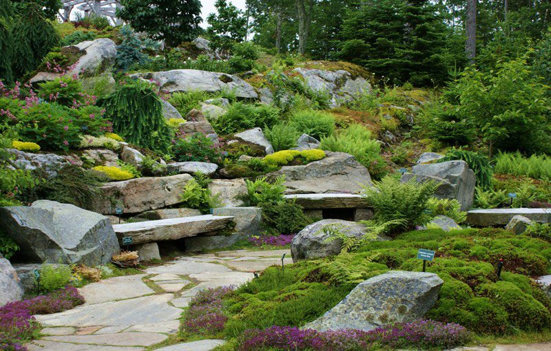 A Visit to Coastal Maine Botanical Garden