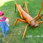 Big Bugs at Morris Arboretum