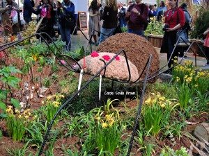 Beneficial Insects at Philadelphia Flower Show