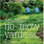 The Beautiful-No Mow Yard